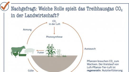 Welche Rolle spielt CO2 in der Landwirtschaft?