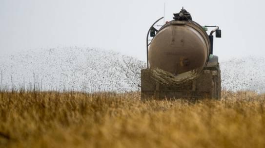 Klimaschutz- aktivitäten der Landwirtschaft wirken: CO2-Ausstoß sinkt