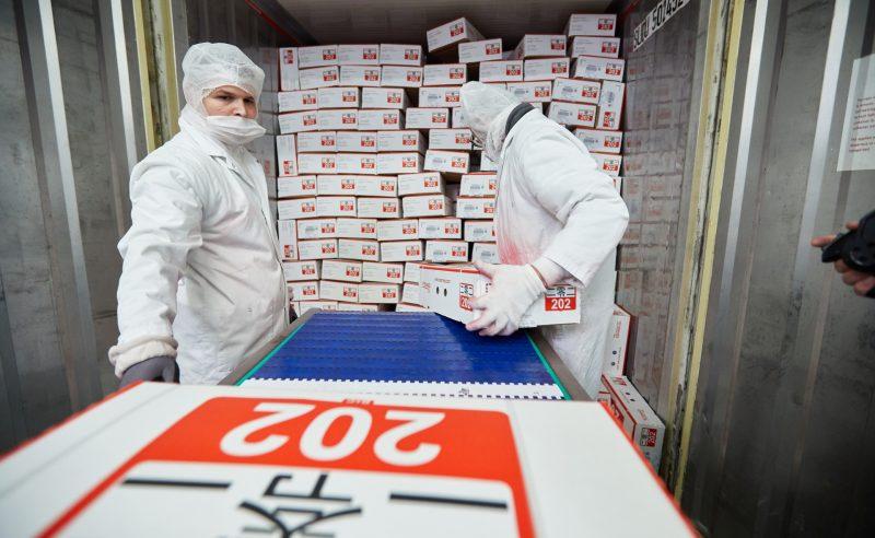 Schweinefleischexport: China verhilft der EU ins Plus